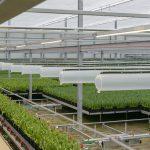 Elektrische installaties - klimaatregelings-, verlichtings- en ontluchtingssystemen